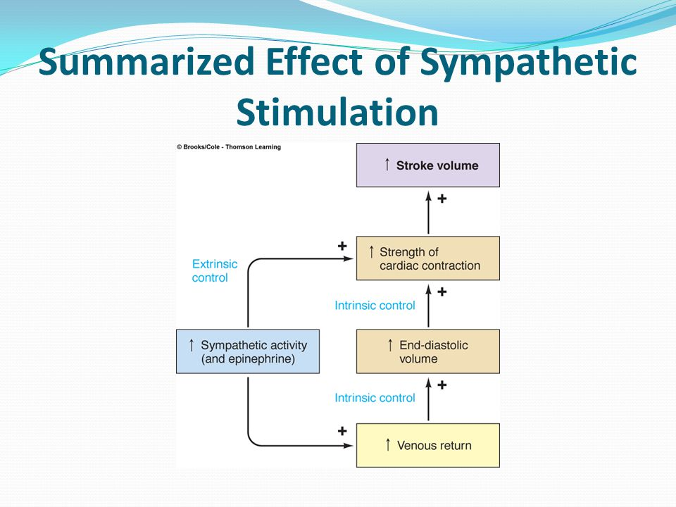 Summarized Effect of Sympathetic Stimulation