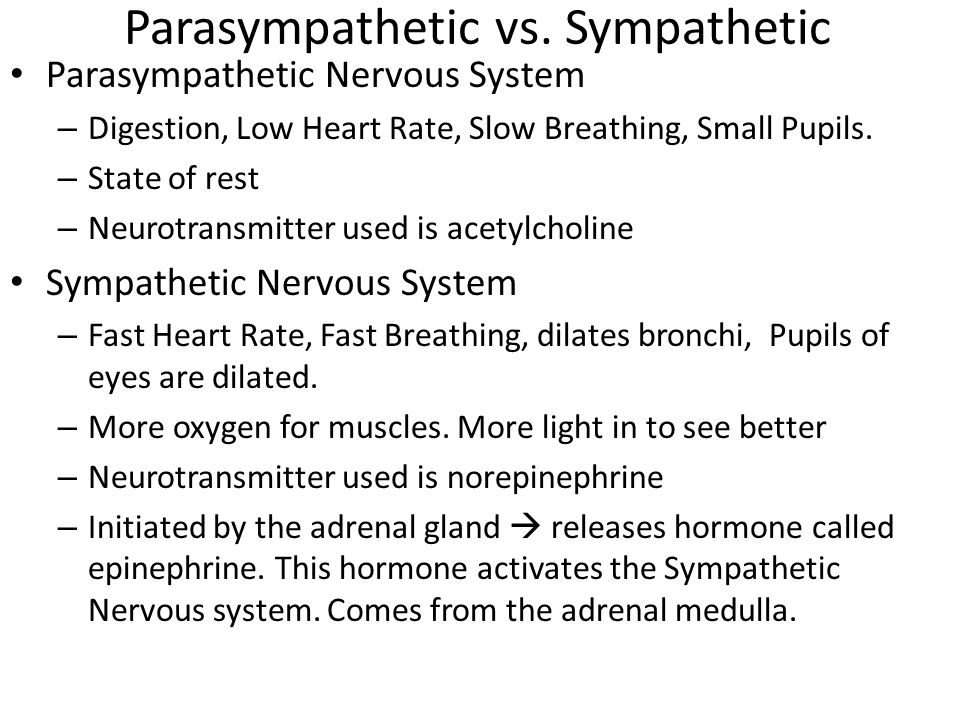 Parasympathetic vs.