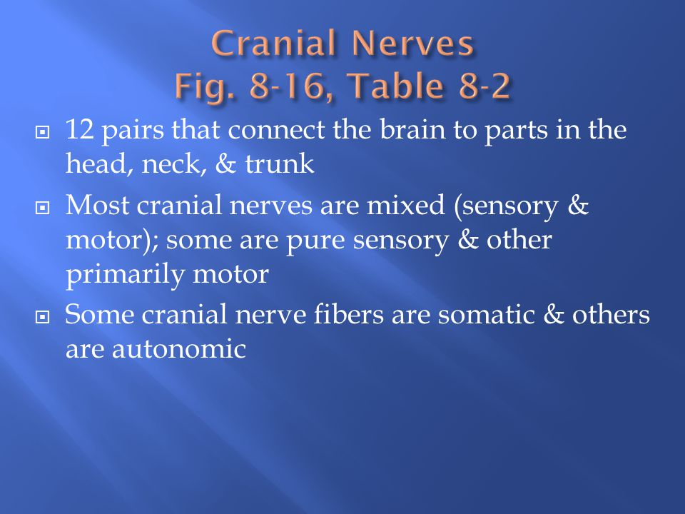 12 pairs that connect the brain to parts in the head, neck, & trunk  Most cranial nerves are mixed (sensory & motor); some are pure sensory & other
