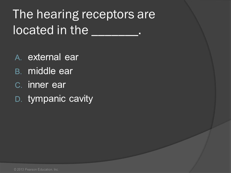 © 2013 Pearson Education, Inc. The hearing receptors are located in the _______. A. external ear B. middle ear C. inner ear D. tympanic cavity