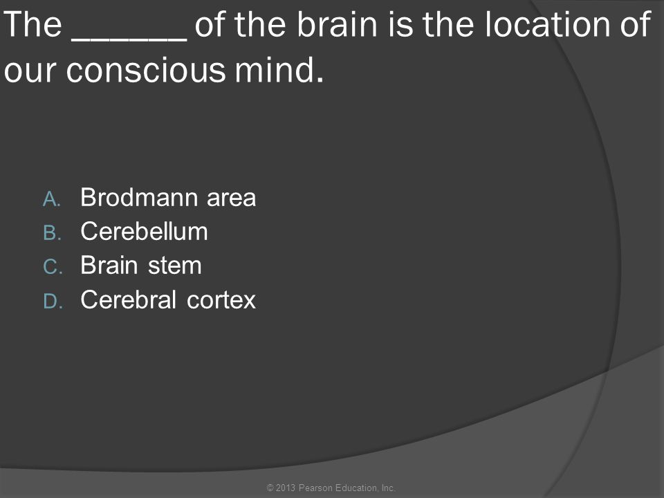 Which of the following brain regions is a responsible for sending most of the sensory to and from the cerebral cortex.