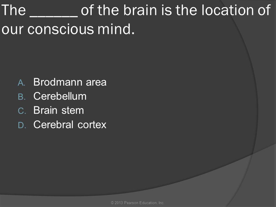 The ______ of the brain is the location of our conscious mind. A. Brodmann area B. Cerebellum C. Brain stem D. Cerebral cortex © 2013 Pearson Educatio