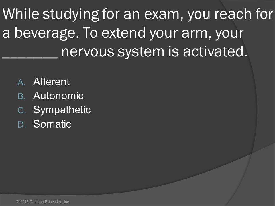 © 2013 Pearson Education, Inc. While studying for an exam, you reach for a beverage. To extend your arm, your _______ nervous system is activated. A.