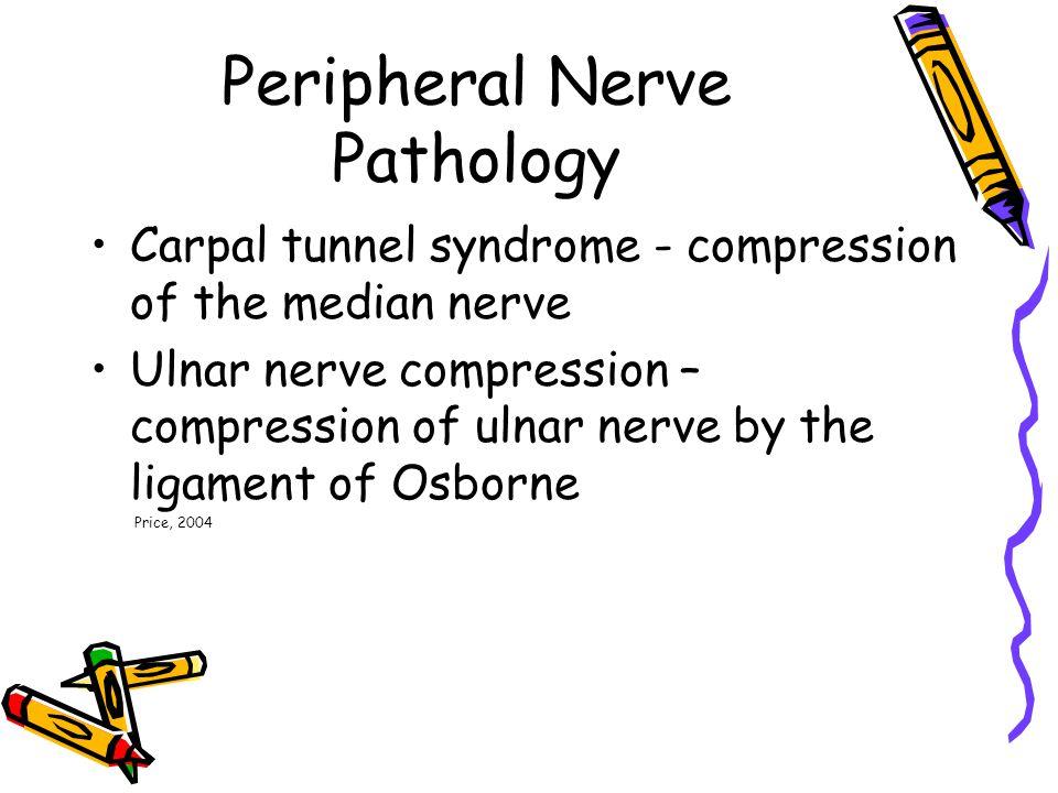Peripheral Nerve Pathology Carpal tunnel syndrome - compression of the median nerve Ulnar nerve compression – compression of ulnar nerve by the ligament of Osborne Price, 2004
