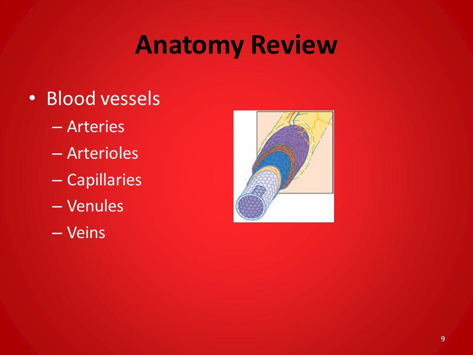 Anatomy Review Blood vessels – Arteries – Arterioles – Capillaries – Venules – Veins 9