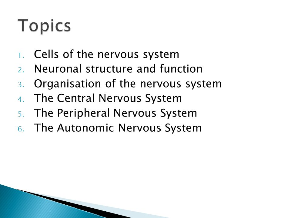 1. Cells of the nervous system 2. Neuronal structure and function 3.