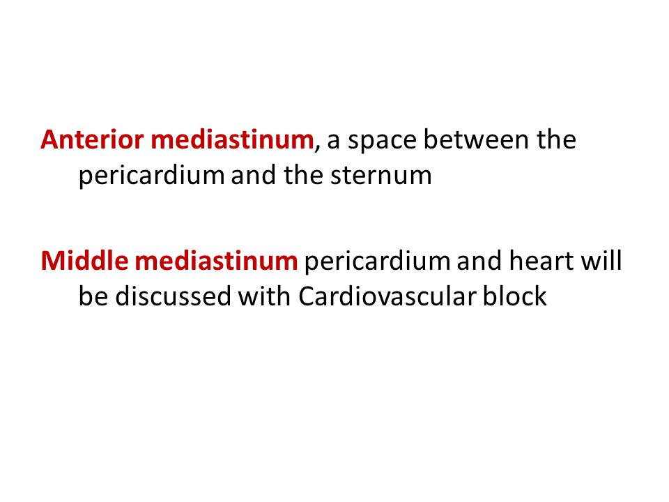 Anterior mediastinum, a space between the pericardium and the sternum Middle mediastinum pericardium and heart will be discussed with Cardiovascular b