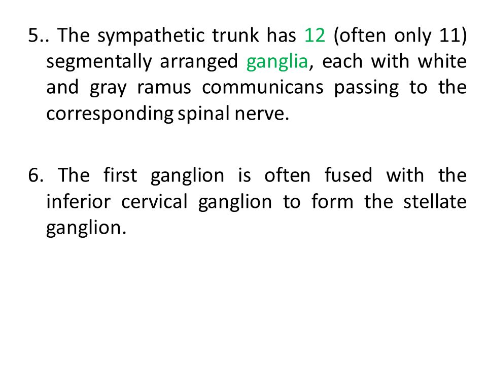 5.. The sympathetic trunk has 12 (often only 11) segmentally arranged ganglia, each with white and gray ramus communicans passing to the corresponding