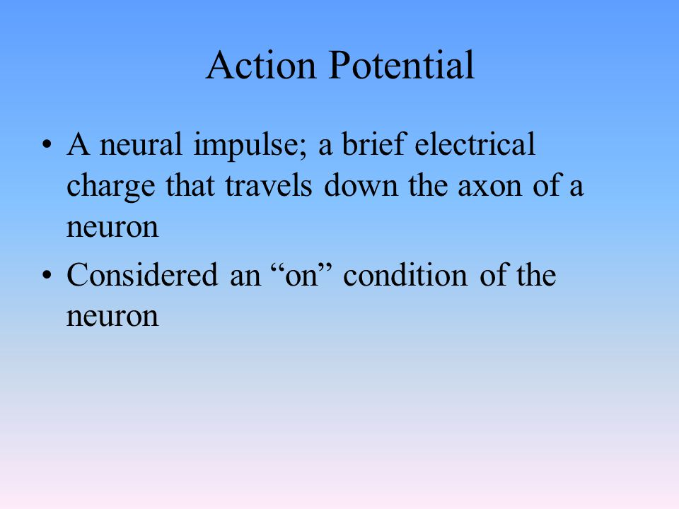 Action Potential A neural impulse; a brief electrical charge that travels down the axon of a neuron Considered an on condition of the neuron