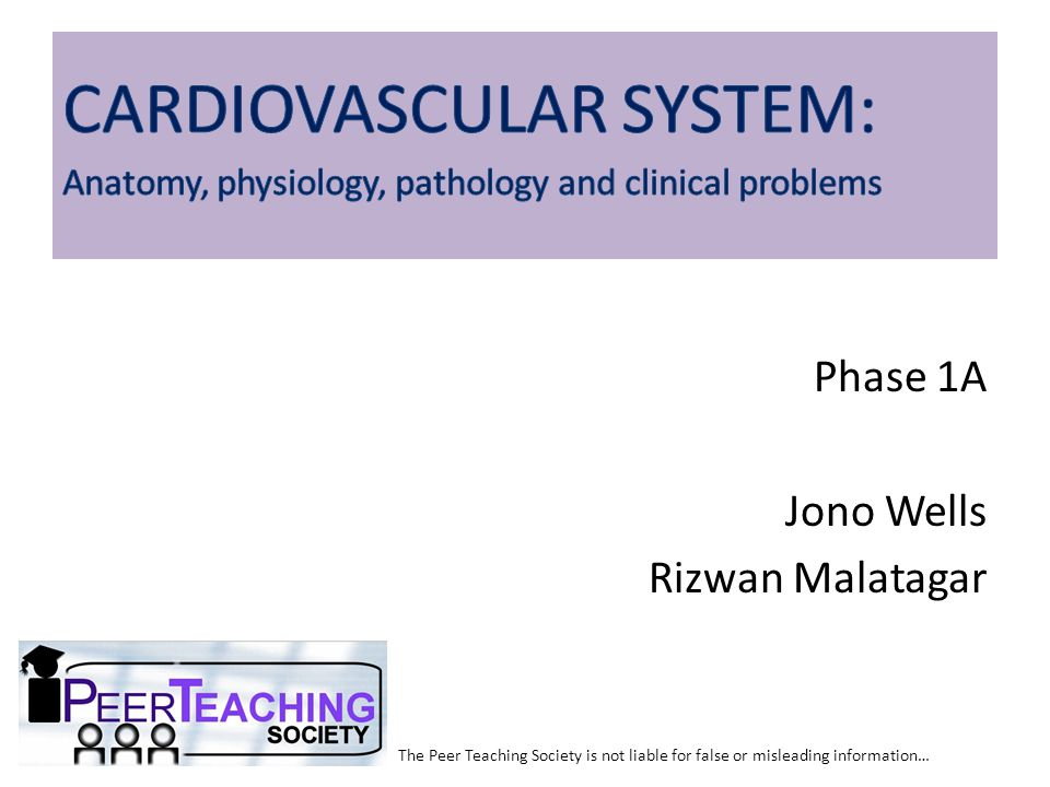 The Peer Teaching Society is not liable for false or misleading information… Cardiac Cycle