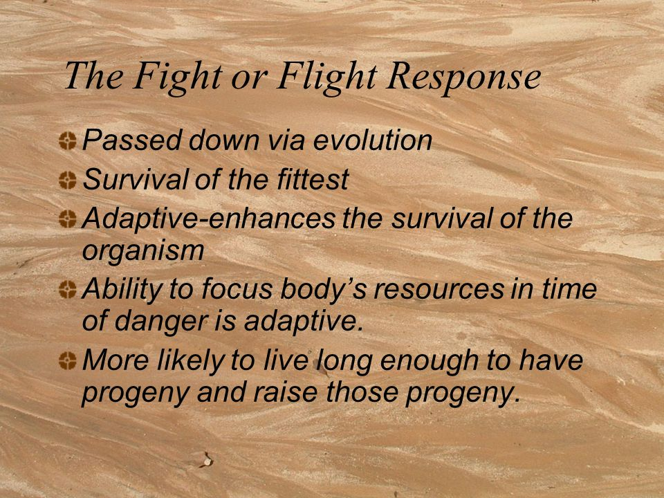 The Fight or Flight Response Passed down via evolution Survival of the fittest Adaptive-enhances the survival of the organism Ability to focus body's resources in time of danger is adaptive.