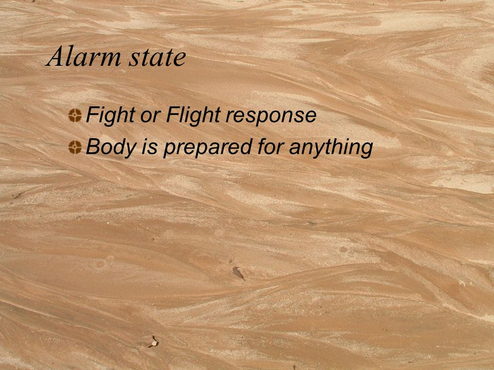 Alarm state Fight or Flight response Body is prepared for anything