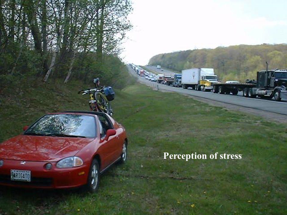 Perception of stress