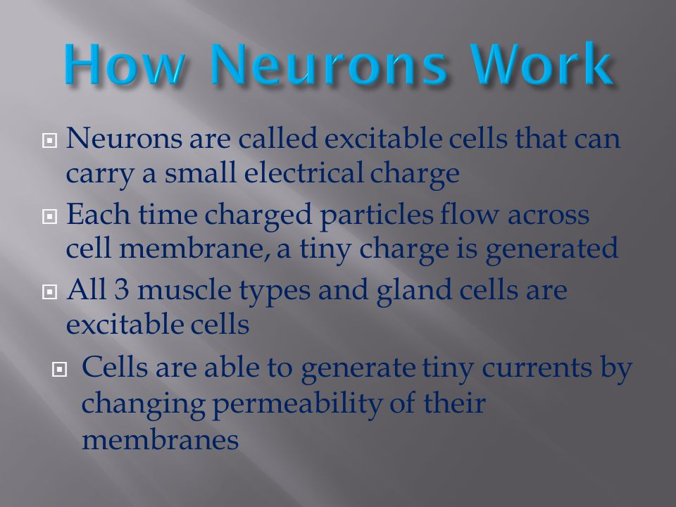  Neurons are called excitable cells that can carry a small electrical charge  Each time charged particles flow across cell membrane, a tiny charge i