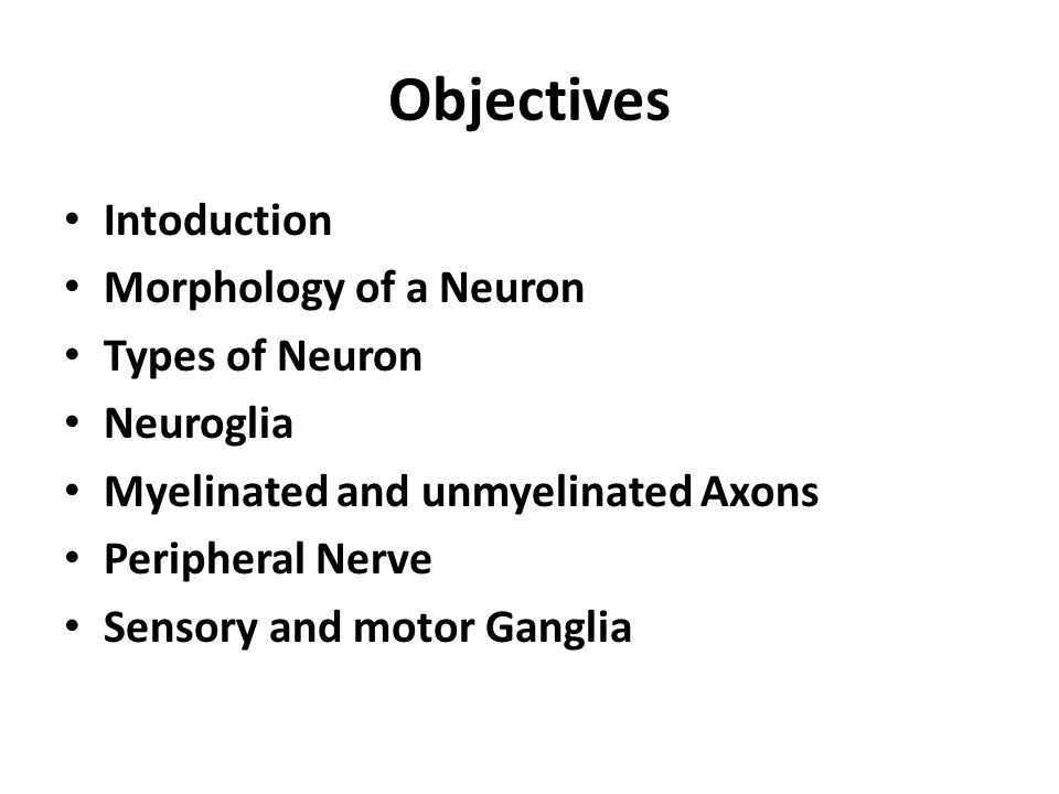 Cellular Components of the Nervous System Neurons Glia (support cells)