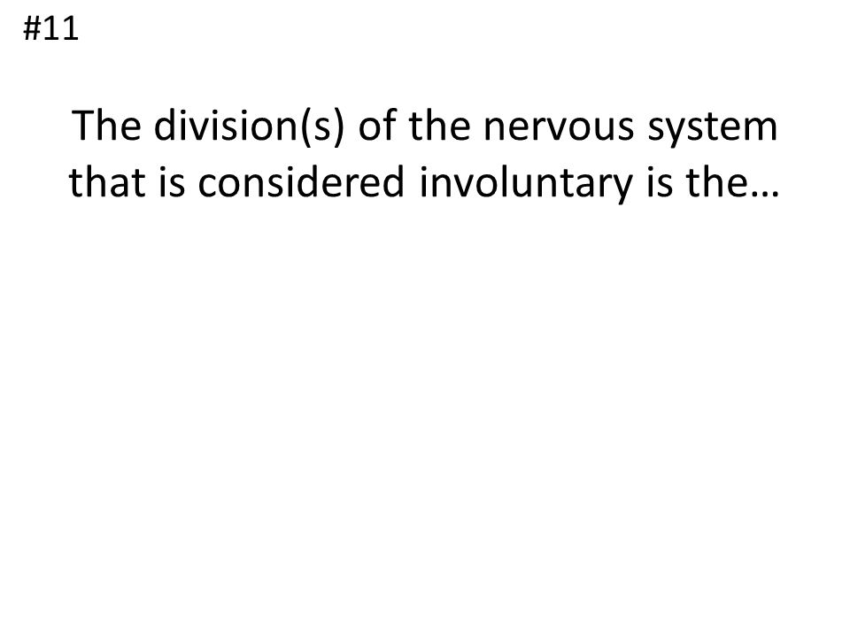 The division(s) of the nervous system that is considered involuntary is the… #11