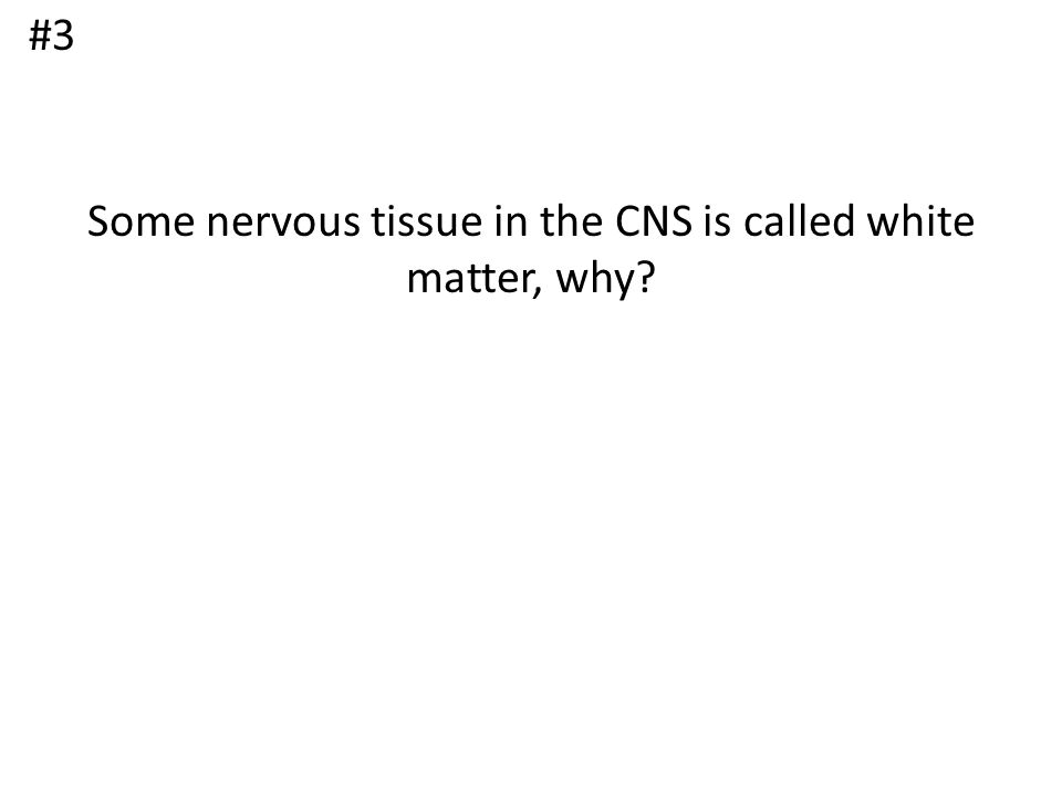 Some nervous tissue in the CNS is called white matter, why? #3