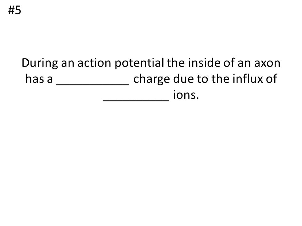 During an action potential the inside of an axon has a ___________ charge due to the influx of __________ ions. #5
