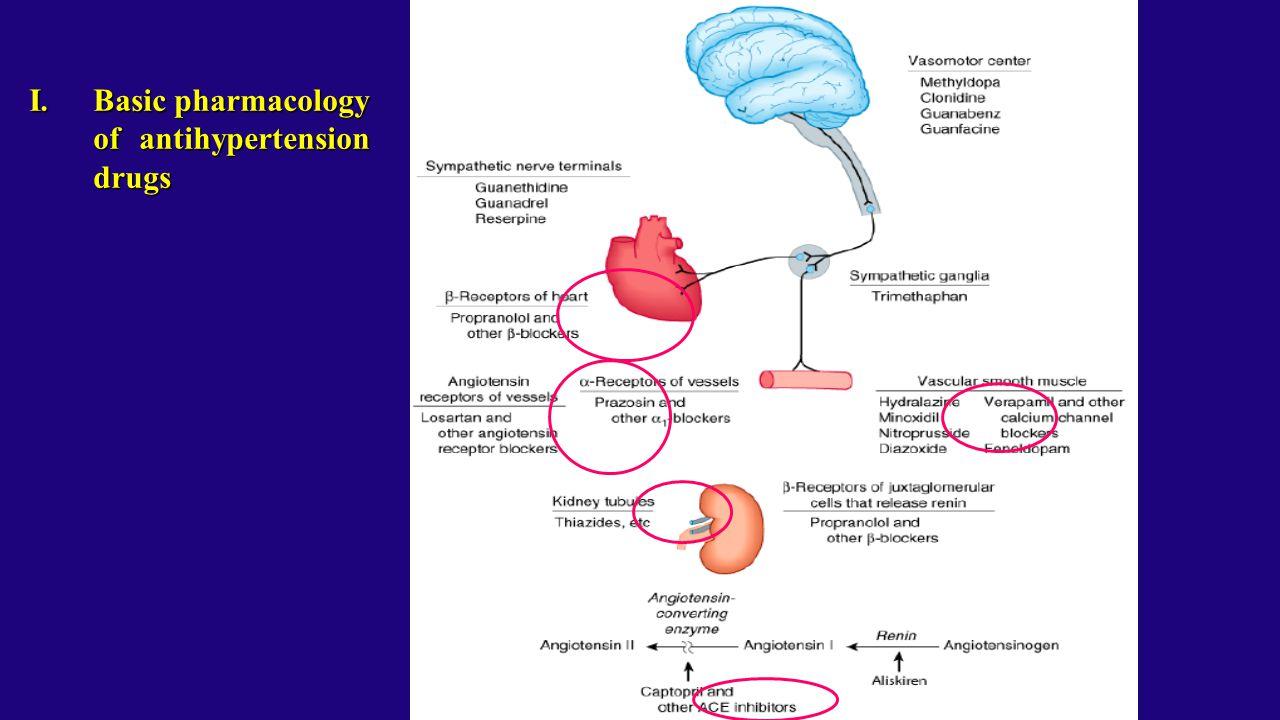 I.Basic pharmacology of antihypertension drugs