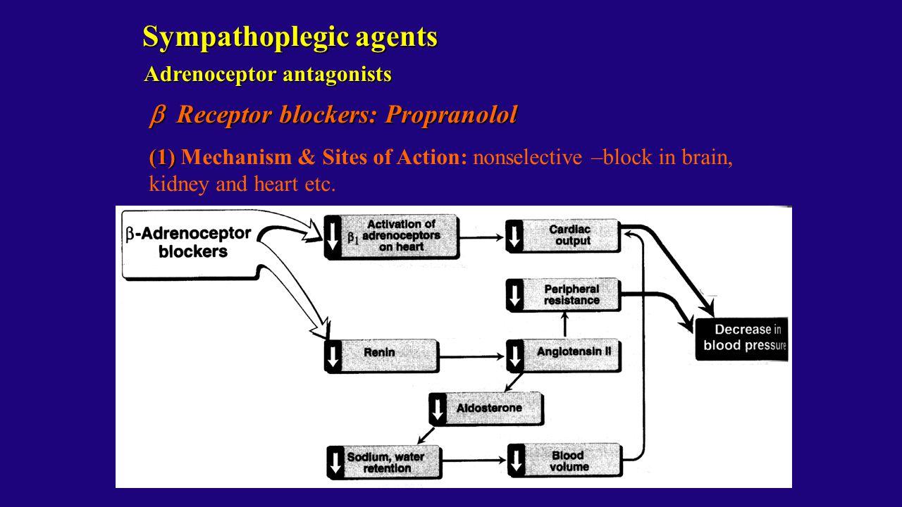 Adrenoceptor antagonists  Receptor blockers: Propranolol (1) (1) Mechanism & Sites of Action: nonselective –block in brain, kidney and heart etc. Sym