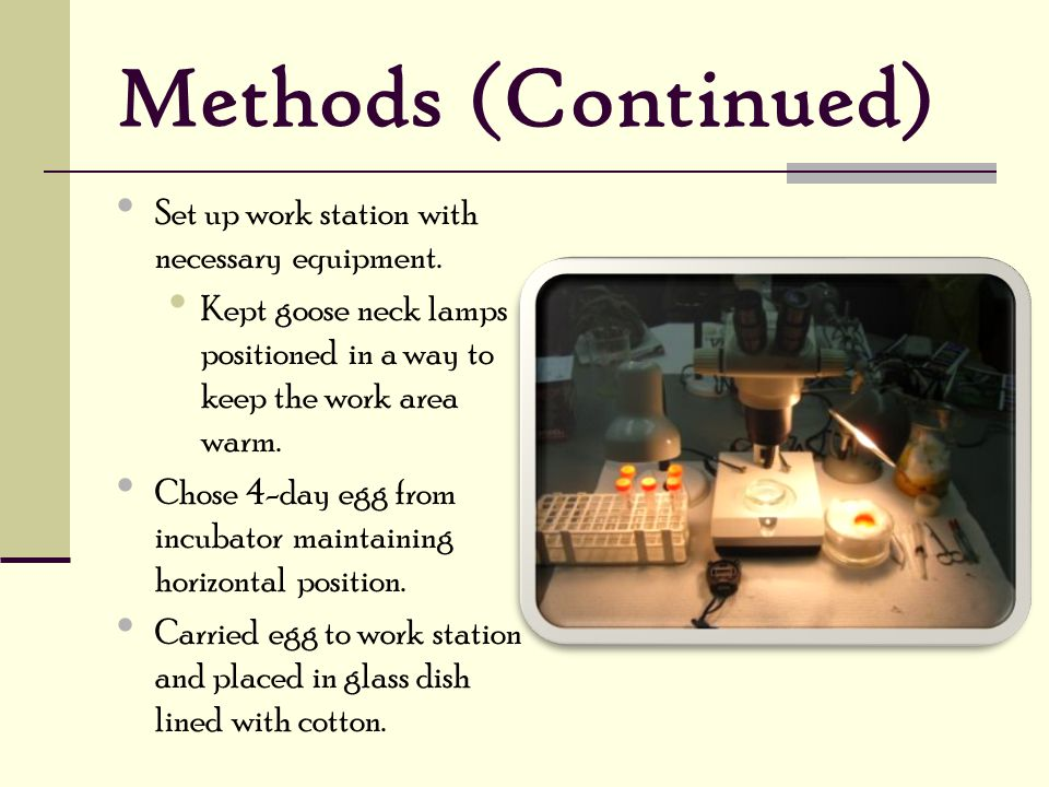 Methods (Continued) Set up work station with necessary equipment.