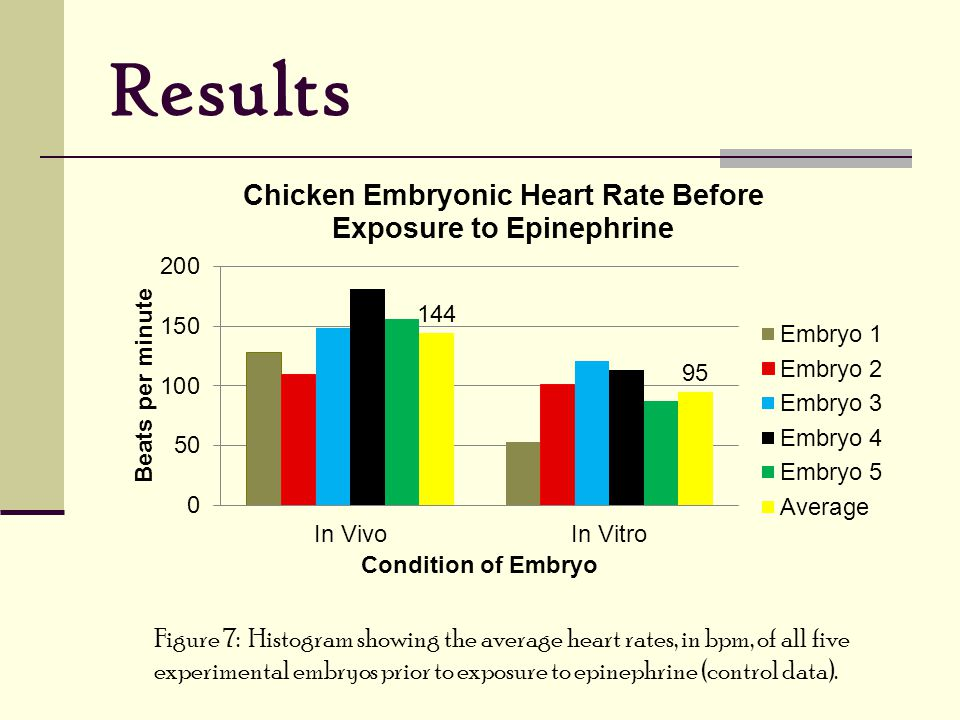 Results Figure 7: Histogram showing the average heart rates, in bpm, of all five experimental embryos prior to exposure to epinephrine (control data).
