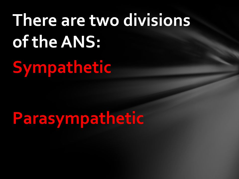 There are two divisions of the ANS: Sympathetic Parasympathetic