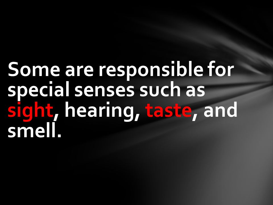 Some are responsible for special senses such as sight, hearing, taste, and smell.