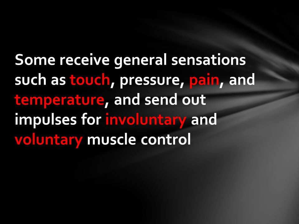Some receive general sensations such as touch, pressure, pain, and temperature, and send out impulses for involuntary and voluntary muscle control