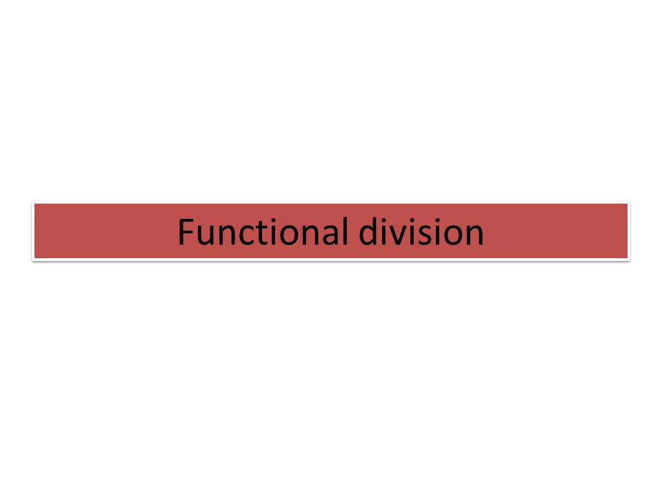 Functional division