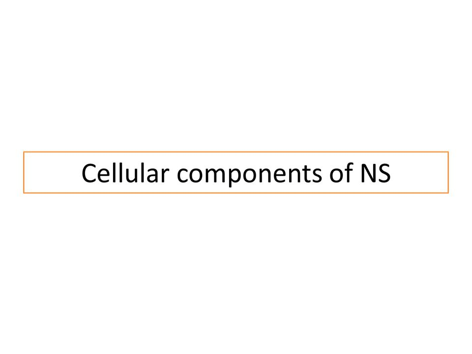 Cellular components of NS Neuron; is the functional unit of NS and has the ability to generate and transmit impulses.