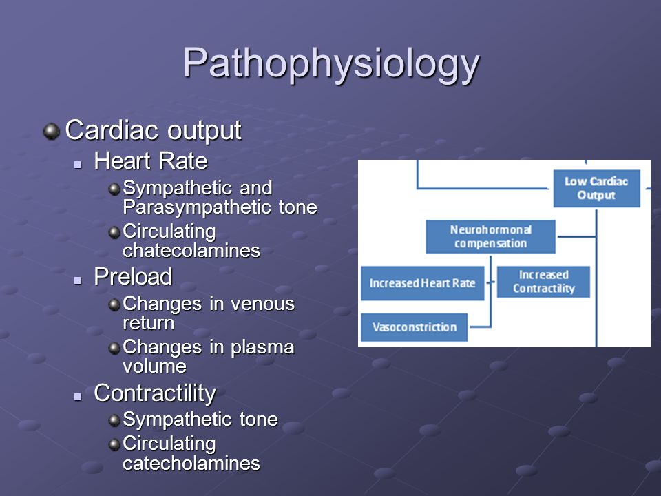 Pathophysiology Cardiac output Heart Rate Heart Rate Sympathetic and Parasympathetic tone Circulating chatecolamines Preload Preload Changes in venous return Changes in plasma volume Contractility Contractility Sympathetic tone Circulating catecholamines