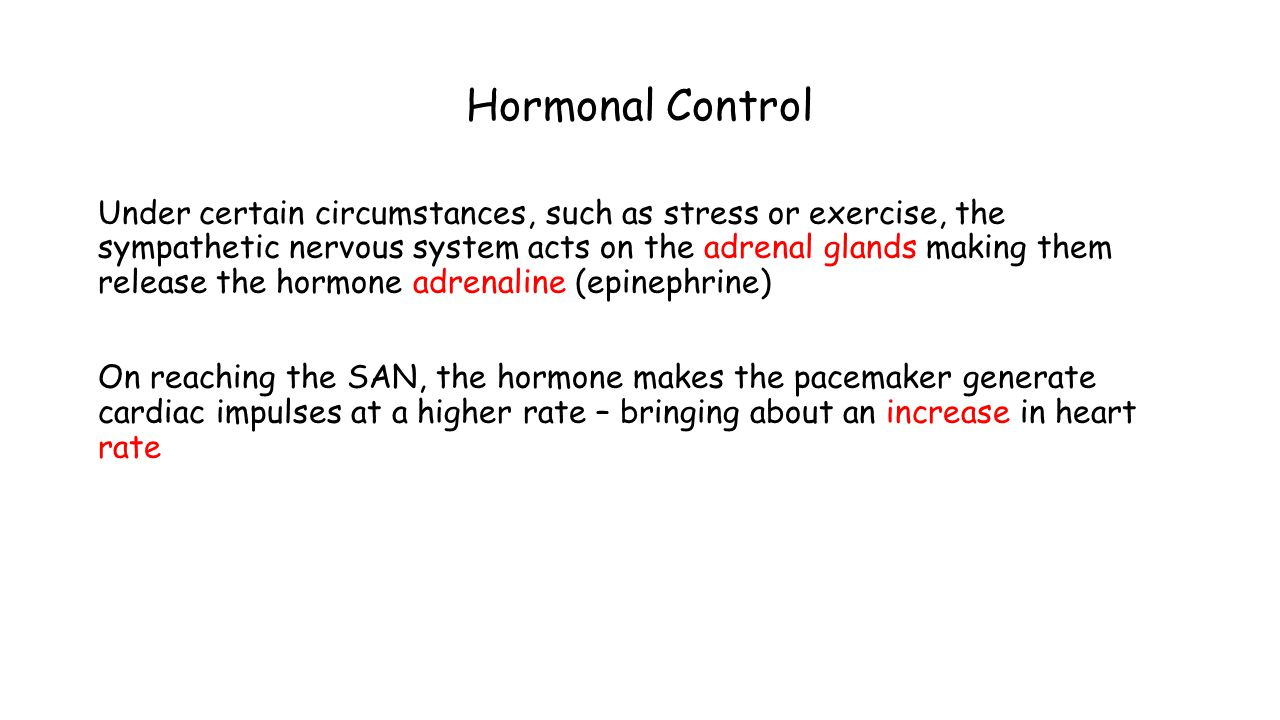 Hormonal Control Under certain circumstances, such as stress or exercise, the sympathetic nervous system acts on the adrenal glands making them releas