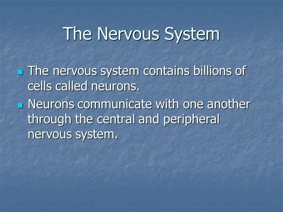 The Nervous System The nervous system contains billions of cells called neurons.