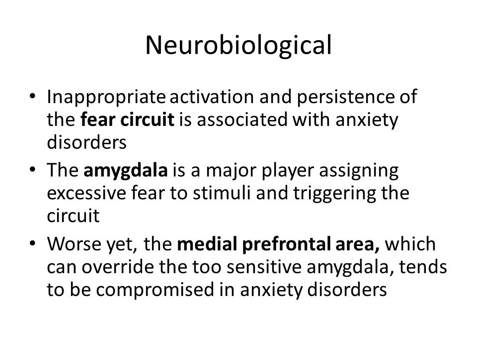 Neurobiological Inappropriate activation and persistence of the fear circuit is associated with anxiety disorders The amygdala is a major player assigning excessive fear to stimuli and triggering the circuit Worse yet, the medial prefrontal area, which can override the too sensitive amygdala, tends to be compromised in anxiety disorders