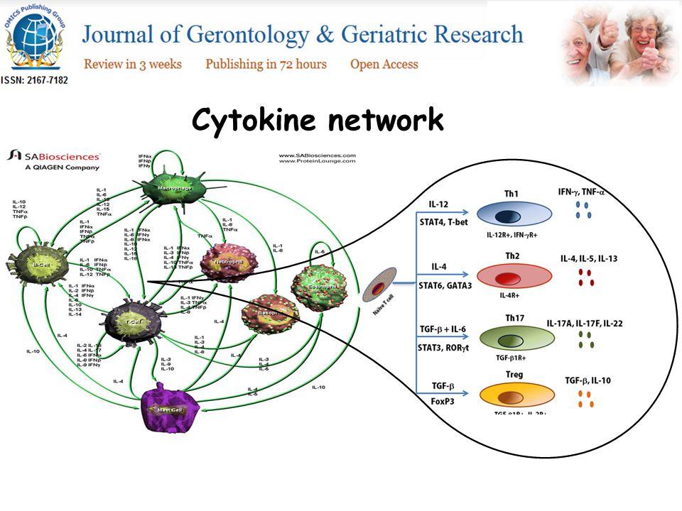 Cytokine network
