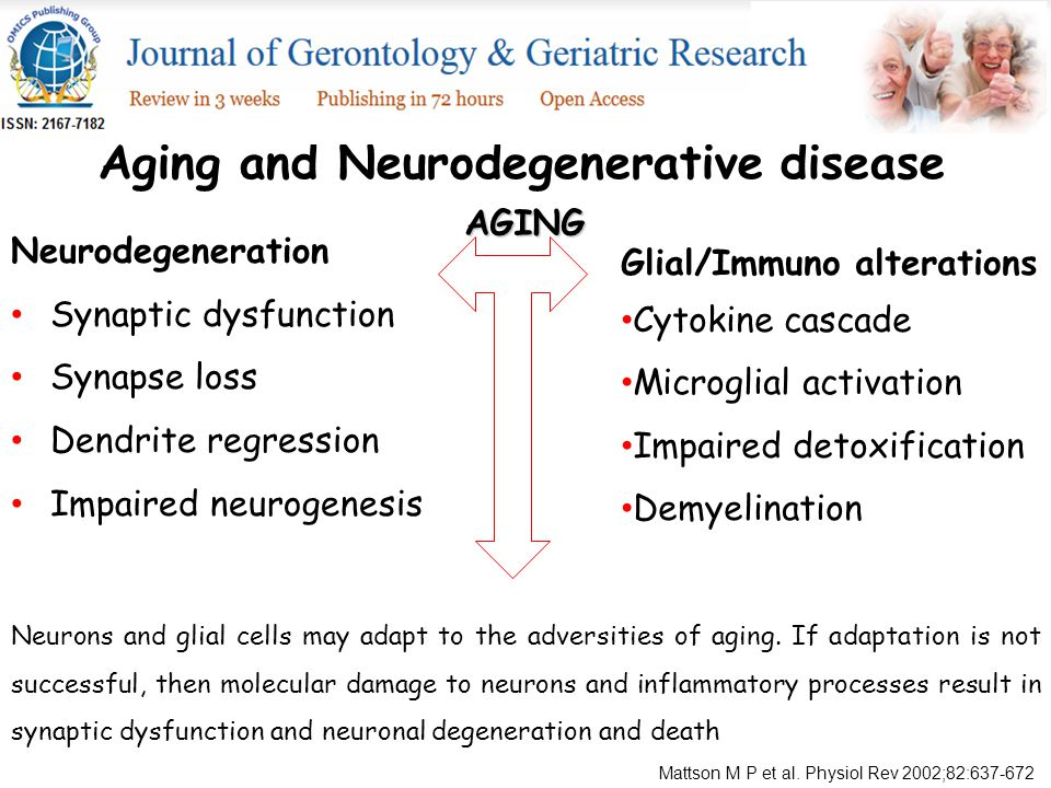 Neurodegeneration Synaptic dysfunction Synapse loss Dendrite regression Impaired neurogenesis Aging and Neurodegenerative disease Glial/Immuno alterations Cytokine cascade Microglial activation Impaired detoxification Demyelination AGING Neurons and glial cells may adapt to the adversities of aging.