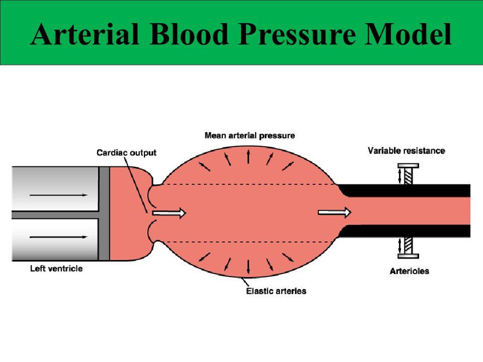 Arterial Blood Pressure Model
