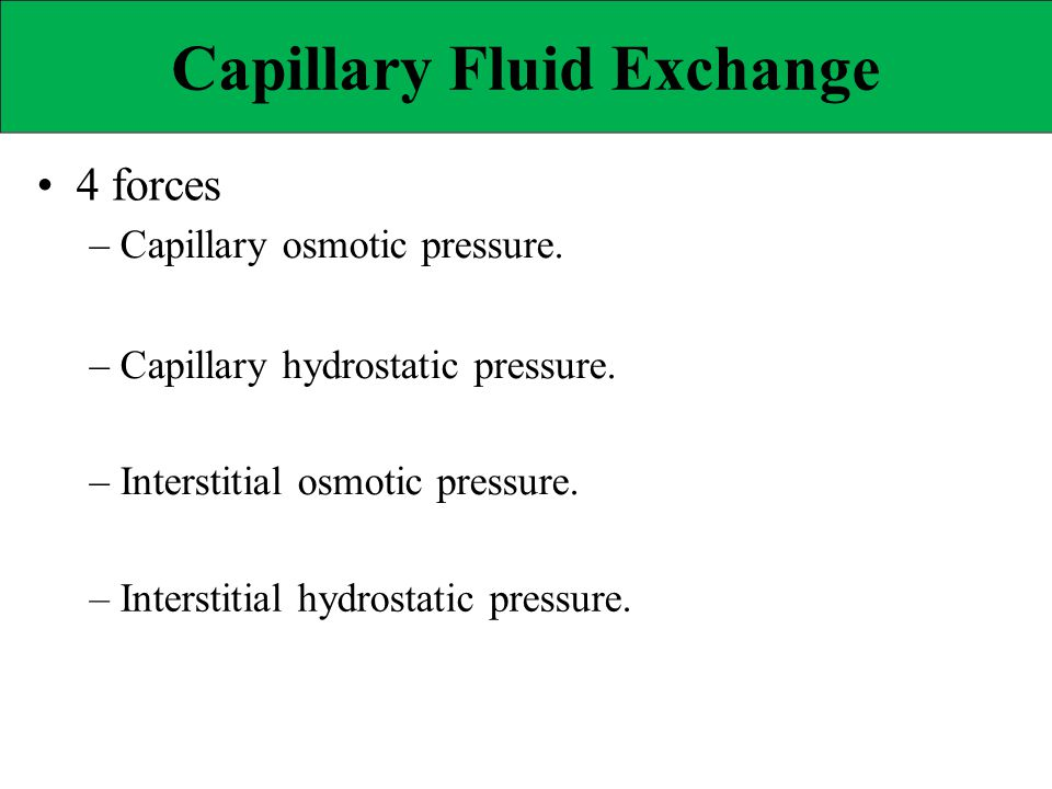 Capillary Fluid Exchange 4 forces – Capillary osmotic pressure. – Capillary hydrostatic pressure. – Interstitial osmotic pressure. – Interstitial hydr