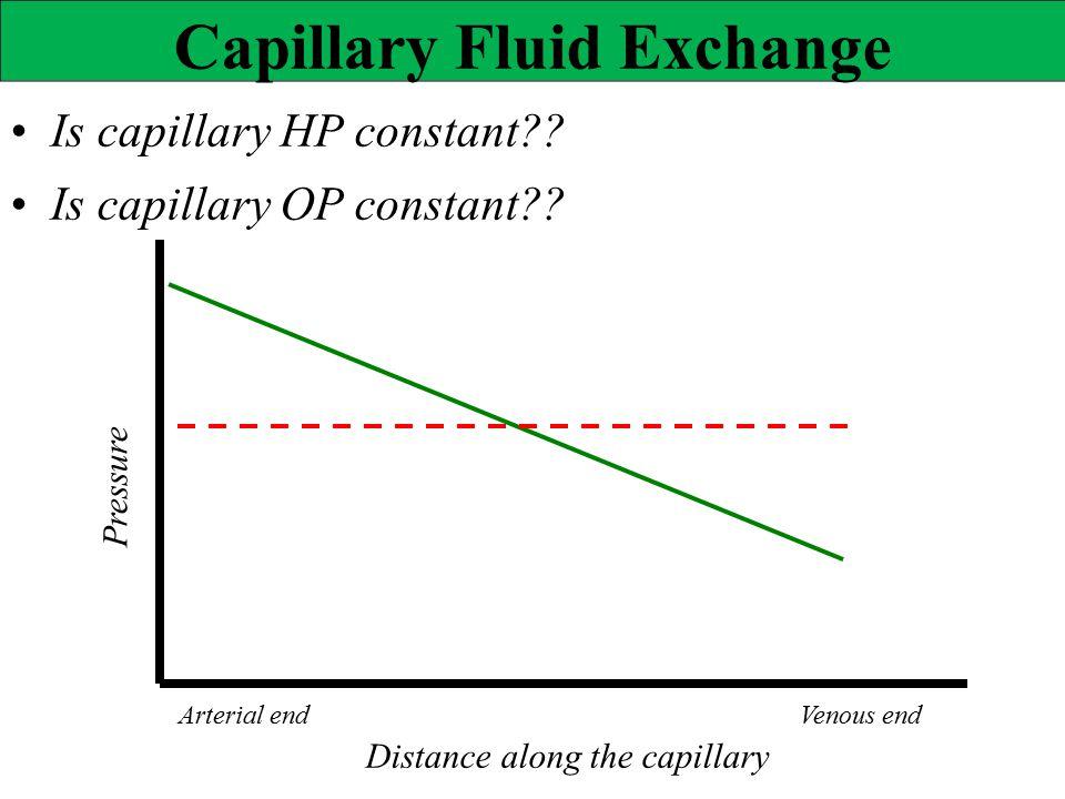Pressure Capillary Fluid Exchange Is capillary HP constant?? Is capillary OP constant?? Distance along the capillary Arterial endVenous end