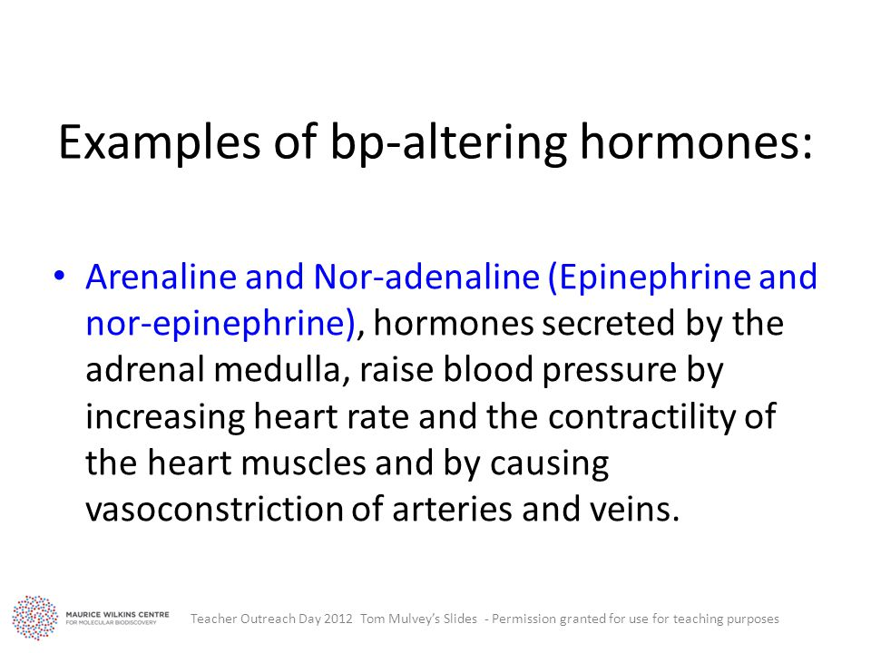 Examples of bp-altering hormones: Arenaline and Nor-adenaline (Epinephrine and nor-epinephrine), hormones secreted by the adrenal medulla, raise blood pressure by increasing heart rate and the contractility of the heart muscles and by causing vasoconstriction of arteries and veins.