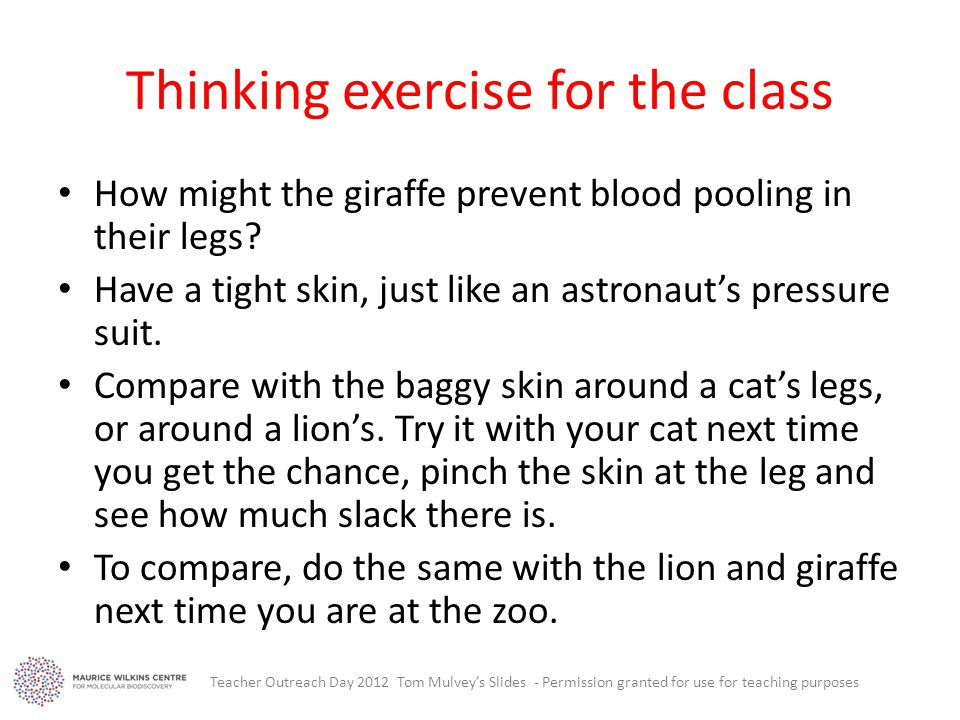 Thinking exercise for the class How might the giraffe prevent blood pooling in their legs.