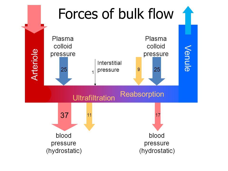 Arteriole Venule blood pressure (hydrostatic) 37 17 blood pressure (hydrostatic) Plasma colloid pressure 25 Plasma colloid pressure 25 11 Ultrafiltration 9 Reabsorption Interstitial pressure 1 Forces of bulk flow