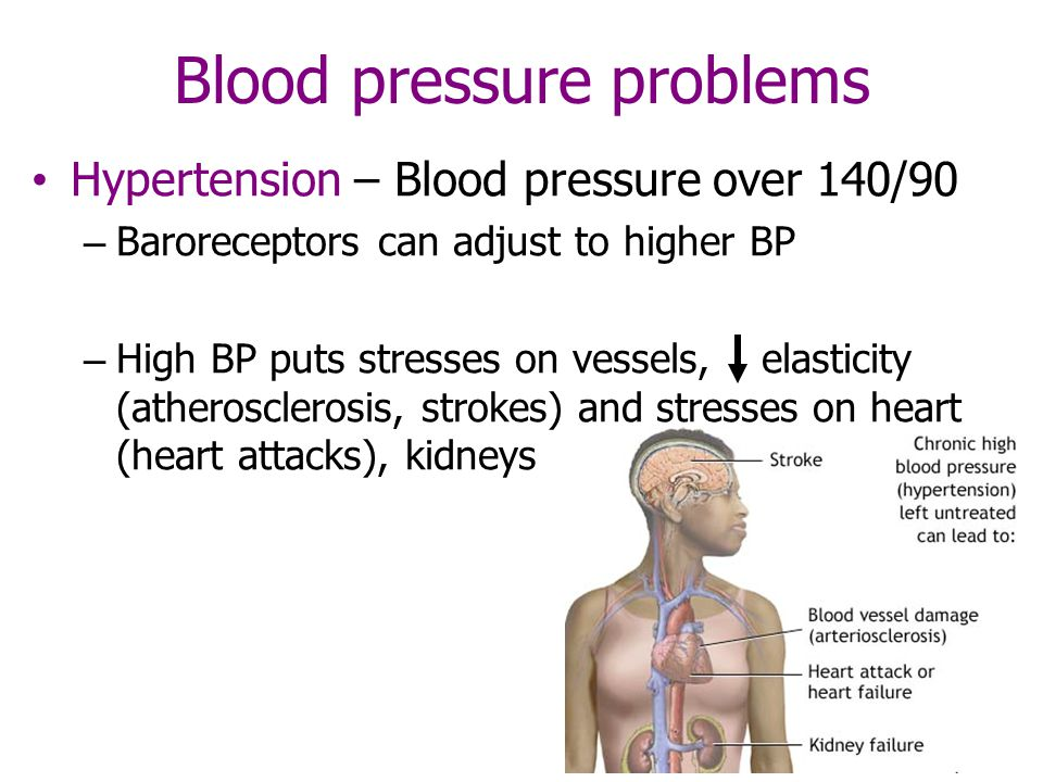 Blood pressure problems Hypertension – Blood pressure over 140/90 – Baroreceptors can adjust to higher BP – High BP puts stresses on vessels, elasticity (atherosclerosis, strokes) and stresses on heart (heart attacks), kidneys