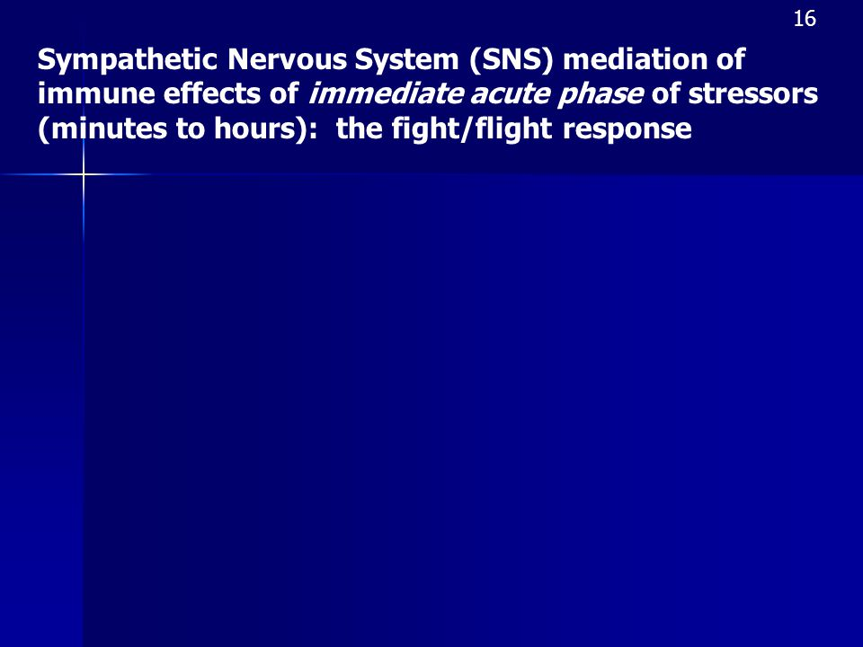 Sympathetic Nervous System (SNS) mediation of immune effects of immediate acute phase of stressors (minutes to hours): the fight/flight response 16
