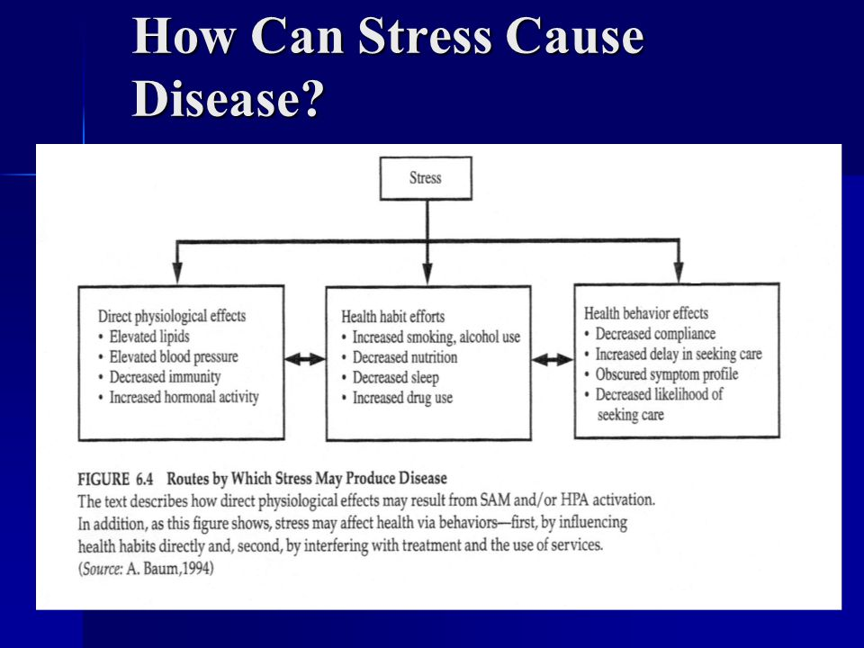 How Can Stress Cause Disease?