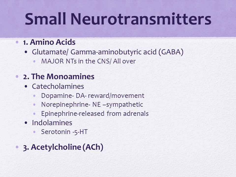 Small Neurotransmitters 1. Amino Acids Glutamate/ Gamma-aminobutyric acid (GABA) MAJOR NTs in the CNS/ All over 2. The Monoamines Catecholamines Dopam
