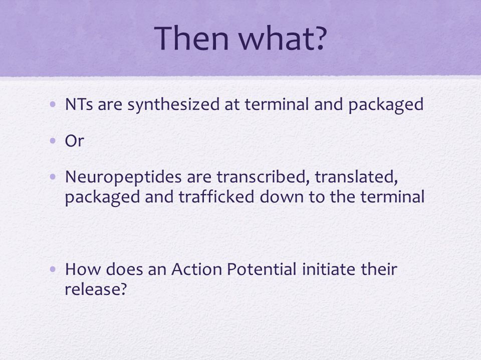 Then what? NTs are synthesized at terminal and packaged Or Neuropeptides are transcribed, translated, packaged and trafficked down to the terminal How