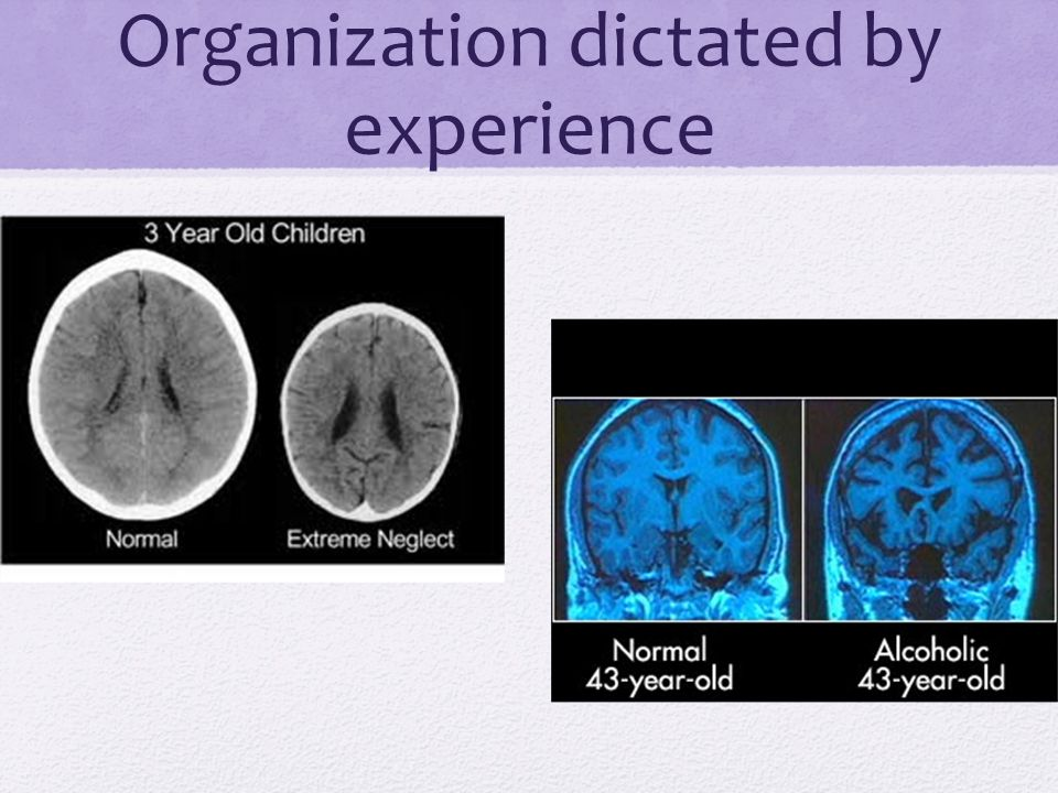 Organization dictated by experience