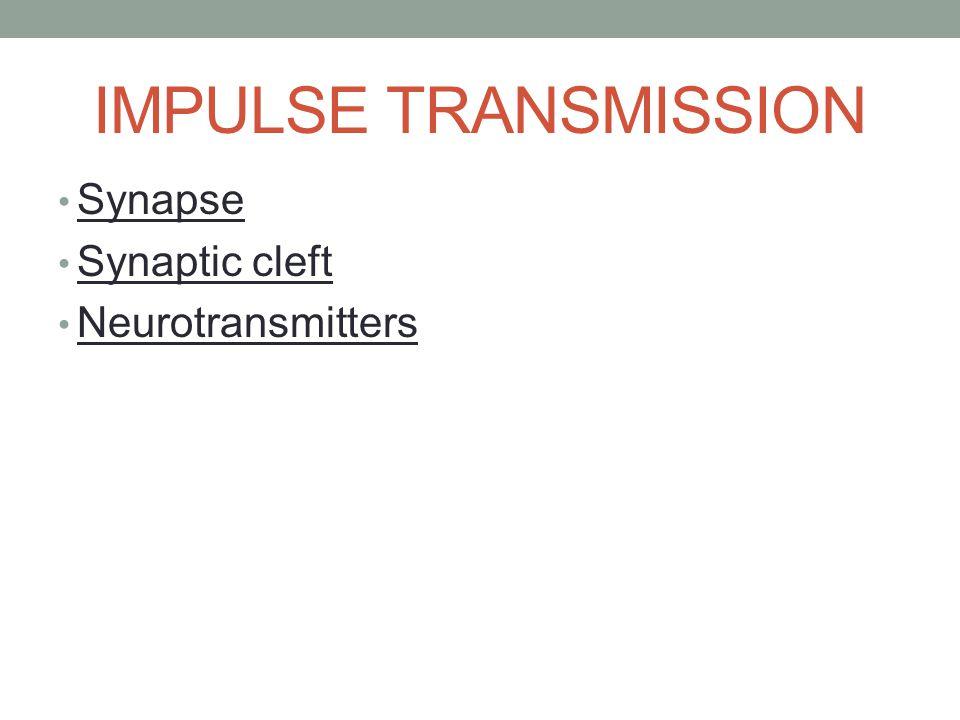 IMPULSE TRANSMISSION Synapse Synaptic cleft Neurotransmitters